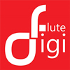Digiflute Media Labs Private Limited.