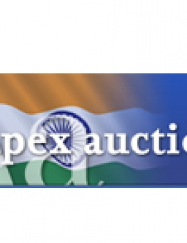 Apex Auctions